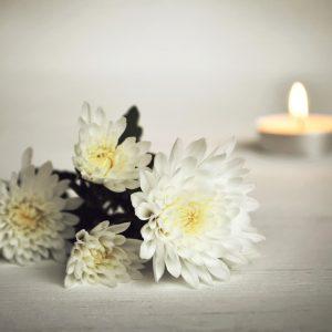 Ein Strauß weißer Chrysanthmen, im Hintergrund ein brennendes Teelicht.
